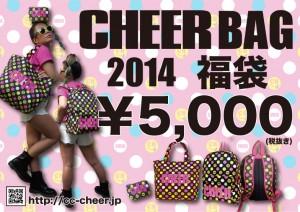 _2014-BAG福袋POP